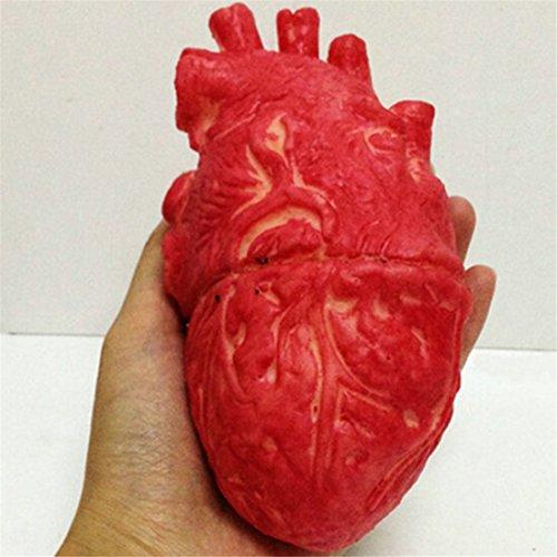 Zombie Heart (Rurah Bloody Zombie Food Human Heart Chop Shop Body Part Organ Halloween Horror Prop Toy)