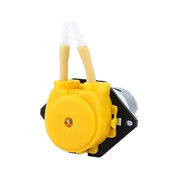 12V Peristaltische bomba bomba dosificadora Tubo flexible de las bombas de la cabeza para Aquarium Lab Aquarienwasser: Amazon.es: Jardín