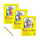 Strathmore 360-111 300 Series Watercolor Pad, 11''x15'' Tape Bound, 12 Sheets (3 Pack) Bundle with Pencil, HB