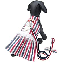Alfie Pet by Petoga Couture - Dancer Dress Harness and Leash Set - Color Stripe, Size: Medium