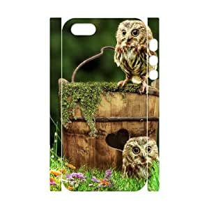 Cool Painting Owl DIY 3D Cover Case for Iphone 5,5S,personalized phone case case528068