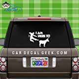 I am Here to Kick Ass Car & Truck Window Decal Sticker, Laptop Decal Sticker, Macbook Decal Sticker, Wall Decal Sticker , 20-Inch , Silver