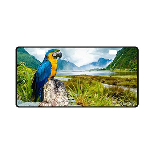 Parrot Custom Cute Colorful Macaw Durable License Plate Frame Metal Personalized Car Tag 11.8 X 6.1 inches (2 (Macaw Plate)