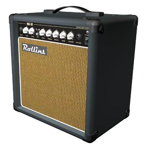 Rollins ROL-30 30W Guitar Amplifier/Reverb by Rollins