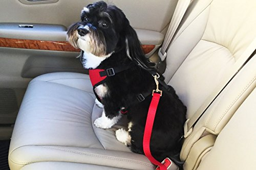 Dog Seat Belt  Dog Car Harness  Connector Strap - Attaches to Vehicles Seat Belt Receptacle for Safe Travel - Easily Converts to Walking Harness