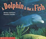 A Dolphin Is Not a Fish, Betsey Chessen, 0590638823