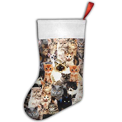 (TENEW Many Cute Cats Men's Women's Print Shoulder Drawstring Bag Backpack String Bags School Rucksack Gym Handbag Christmas Stocking Christmas Decor 18