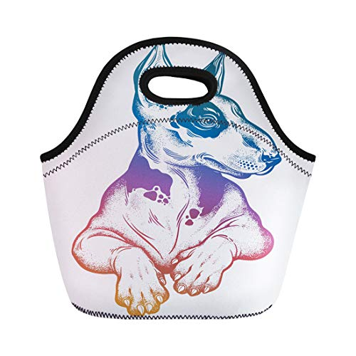 (Semtomn Lunch Bags Vintage Beautiful Gothic Bull Terrier Portrait Decorated in Traditional Neoprene Lunch Bag Lunchbox Tote Bag Portable Picnic Bag Cooler Bag)