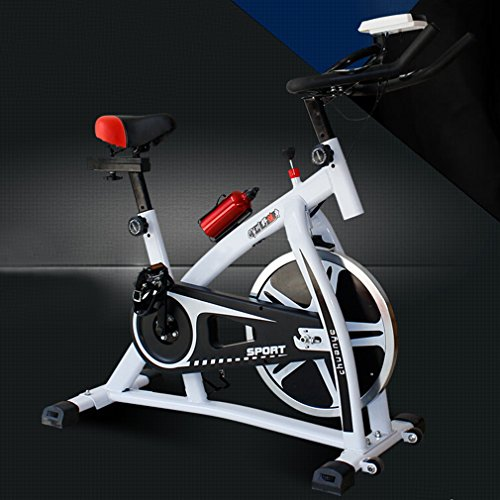 Homgrace Cycling Spinning Mini Exercise Bike Equipment Bicycle Indoor Bike Trainer Exercise Bicycle Indoor Bike Cycling Health Workout (White)