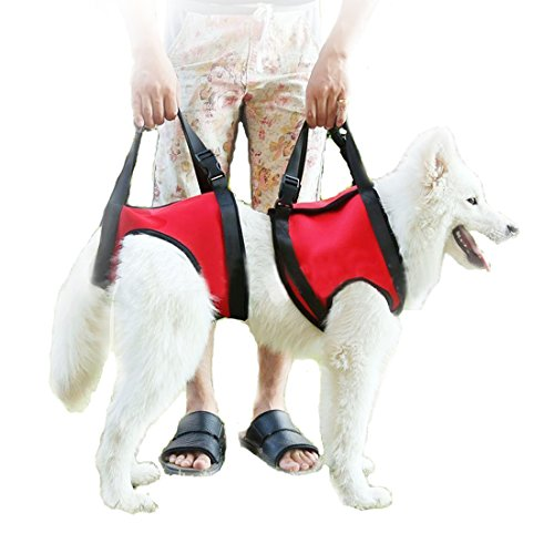 Lifeunion Dog Foreleg and Hind Rear Legs Sling Dog Lift Support Rehabilitation Harness for Elderly, Injured, Disable Pets, Help Stand Up, Up/Down Stairs, Get into Car (S, Red) (Up And Out Lift Harness compare prices)