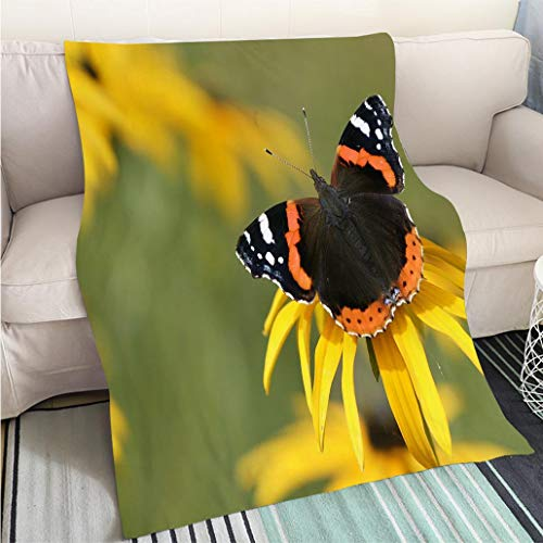 BEICICI Art Design Photos Cool Quilt Red Admiral Butterfly on Yellow Flower Fashion Ultra Cozy Flannel Blanket
