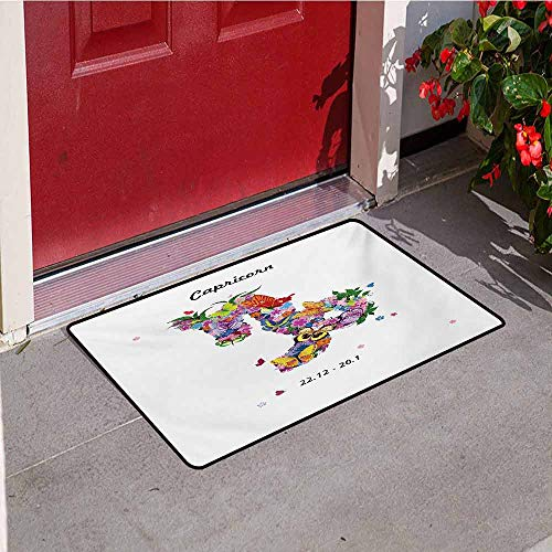 Jinguizi Zodiac Capricorn Universal Door mat Composition of Blossoming Spring Flowers with Foliage and Butterflies Door mat Floor Decoration W47.2 x L60 Inch Multicolor