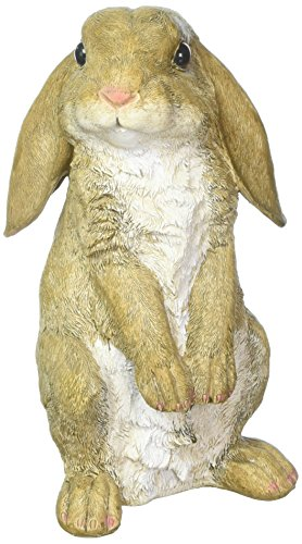 Summerfield Terrace Curious Rabbit Garden Statue