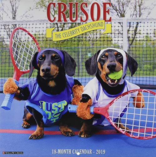 Crusoe the Celebrity Dachshund 2019 Wall Calendar (Dog Breed Calendar) (Cute Dog Breeds)