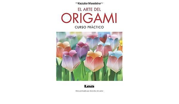 El arte del origami 2º Ed.: Curso práctico (Spanish Edition) (Spanish) Paperback – March 1, 2013