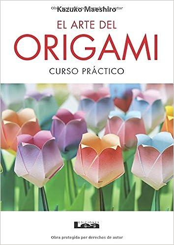 El arte del origami 2º Ed.: Curso práctico (Spanish Edition): Kazuko Maeshiro: 9789876348478: Amazon.com: Books