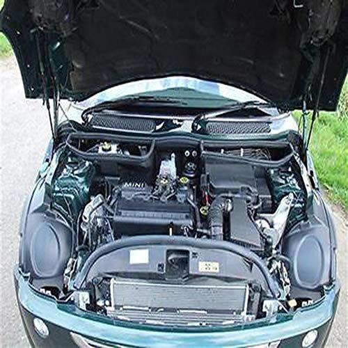 Tapa de la botella de agua del tanque de expansión del radiador Pudincoco MINI ONE & Cooper 2001 a 2006 Gasolina (negro): Amazon.es: Coche y moto