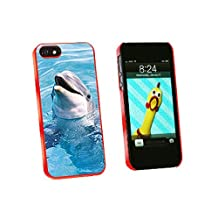 Graphics and More Dolphin Snap-On Hard Protective Case for iPhone 5/5s - Non-Retail Packaging - Red