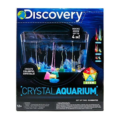 Anne Crystal - Discovery Crystal Aquarium by Horizon Group USA