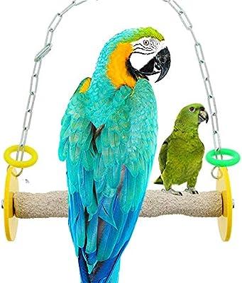 Danigrefinb Pet Haning Swing Pet Pájaro Loro Guacamayo Colgante ...