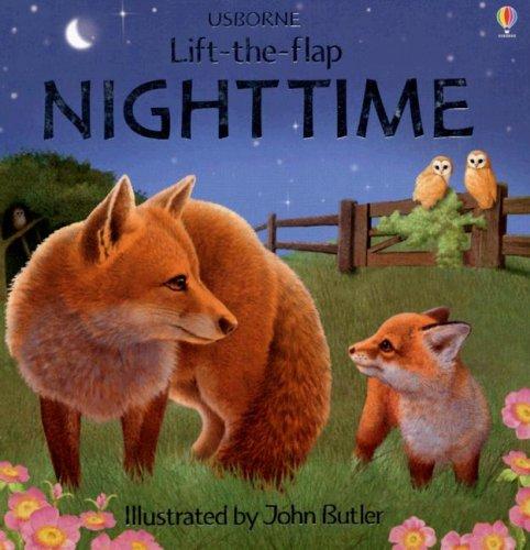 Nighttime (Luxury Lift-The-Flap Learners) ebook