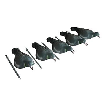 GUGULUZA Carcasa para pájaros de 16 pulgadas, diseño realista, para jardín, caza, decoración de palomitas y tiro de palos: Amazon.es: Deportes y aire libre