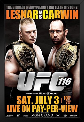 Pyramid America Official UFC 116 Brock Lesnar vs Shane, used for sale  Delivered anywhere in USA