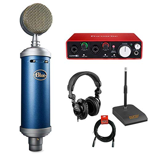 Blue Bluebird SL Large-Diaphragm Condenser Studio Microphone with Focusrite Scarlett 2i2 USB Audio Interface, Desktop Microphone Stand, Studio Headphones and XLR-XLR Cable