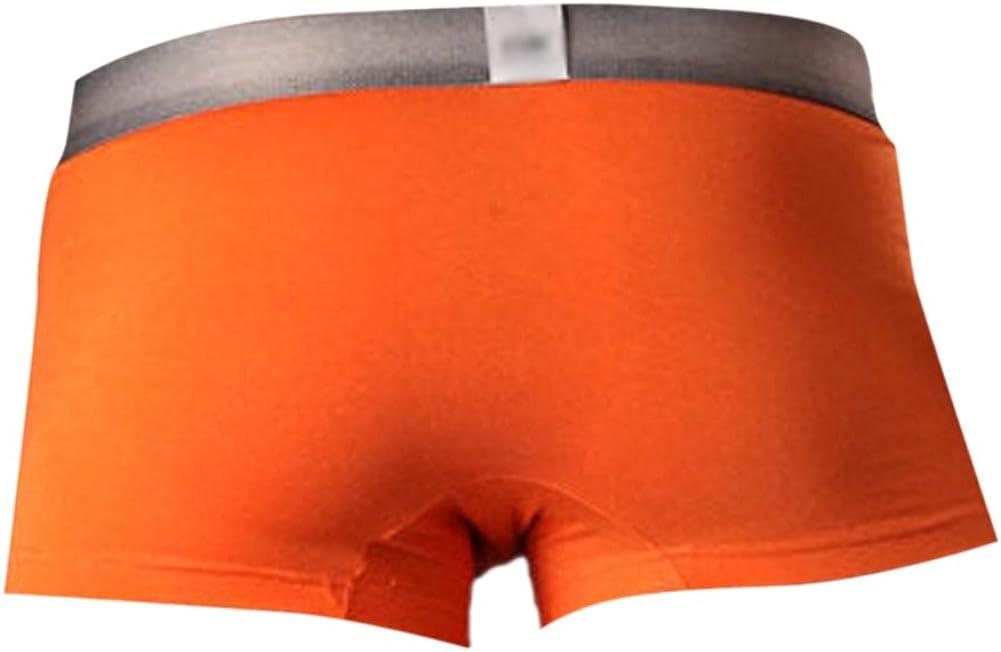 Vividda Herren Vogel Muster Baumwolle Unterw/äsche Unterhosen Low Rise Atmungsaktive Boxershorts