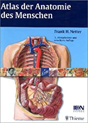 Atlas der Anatomie des Menschen.