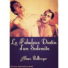 Le Fabuleux destin d'un sodomite (French Edition)