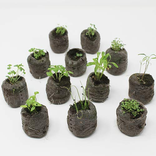 Herb Garden Seed Starter Kit - Plant Herb Seeds Your Self and Grow Your Own Herb Seedlings - Indoor or Out (with peat pods/pellets) by Urban Leaf (Image #1)