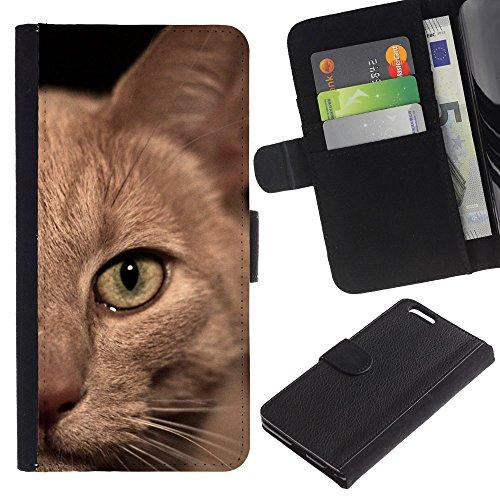 LASTONE PHONE CASE / Luxe Cuir Portefeuille Housse Fente pour Carte Coque Flip Étui de Protection pour Apple Iphone 6 PLUS 5.5 / Burmese American Shorthair British Cat