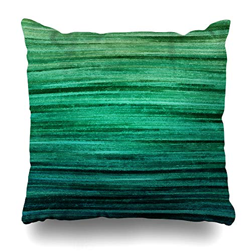Ahawoso Throw Pillow Cover Ancient Green Color Space Text Creative for Vintage Abstract Site Water Blue Emerald Wall Stripe Home Decor Cushion Case Square Size 20 x 20 Inches Zippered Pillowcase