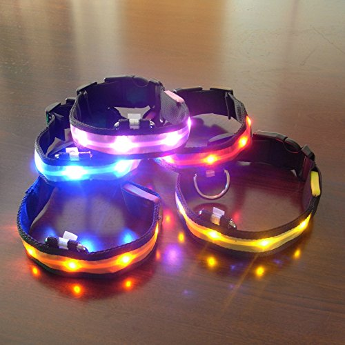 bioings (TM) LED Nylon Pet Halsband Sicherheitsgurte Tricks blinkenden Glow in the Dark erleuchtet Katze Hund Krawatte verhindern wanderten Outdoor qa022