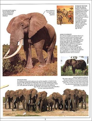 why did orwell shoot the elephant 30-09-2014 rhetorical analysis:shooting an elephant ethos  that he was going to shoot the elephant  a show of orwell shooting the elephant,.