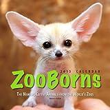 ZooBorns 2013 Wall Calendar