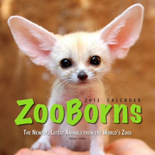 ZooBorns 2013 Wall Calendar