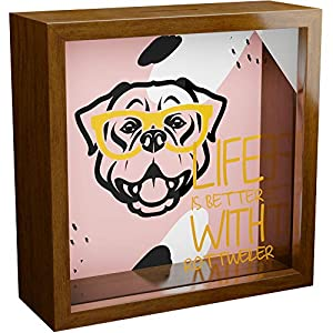 Rottweiler Wall Decor Gifts   6x6x2 Glass Fronted Shadow Box   Wooden Memorabilia Picture Frame   Keepsake Display Case for Dog Lover   Rottweiler Themed Memory Box 1