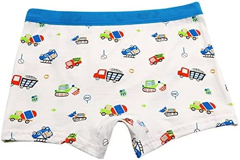 CHUNG Little Boys Toddlers Cotton Briefs Underwear 5 6 Pack 2-9Y Car Dinosaur Print
