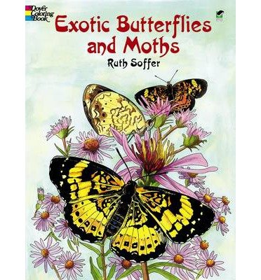 Read Online Exotic Butterflies and Moths CB (Dover Pictorial Archives) (Mixed media product) - Common pdf