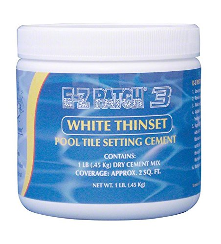 E-Z Patch 3 White Thinset Pool Tile Repair Cement 1 lb. from EZ Brand