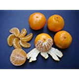 CUTIES ORANGES CALIFORNIA GROWN CLEMENTINES FRESH FRUIT PRODUCE 5 POUNDS