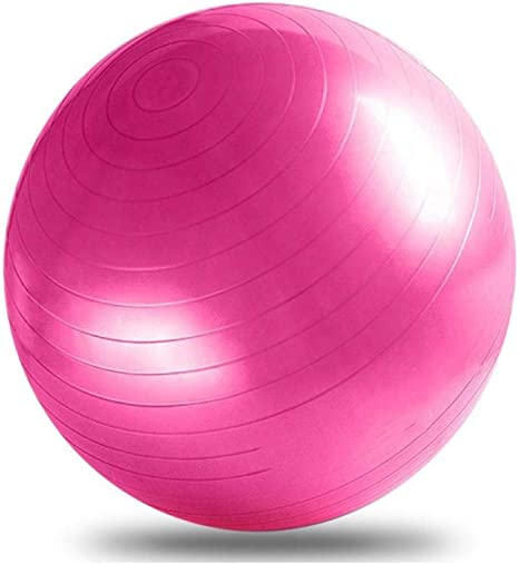 65CM Pelota Suiza o Gym Ball. Bola para Pilates, Yoga, Fitness ...