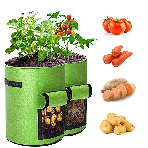 BAGOKIE Potato Grow Bags 10 Gallon with Flap 2 Pack, Thick Breathable Non-Woven Fabric Bags, Vegetable Planting Bags…