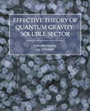 Effective Theory of Quantum Gravity, Subodha Mishra and Joy Christian, 1845494768