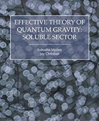 Effective Theory of Quantum Gravity: Soluble Sector