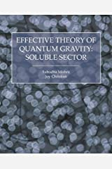 Effective Theory of Quantum Gravity: Soluble Sector Paperback