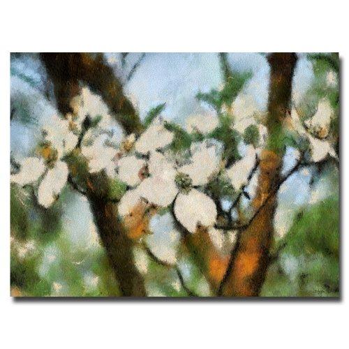 Dogwood Tree by Lois Bryan, 22x32-Inch Canvas Wall Art