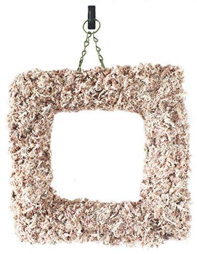 """Supermoss 22353) Sphagnum Moss Living Wreath 15"""" - Square..."""